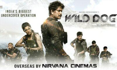 WildDog Pre-Release Business