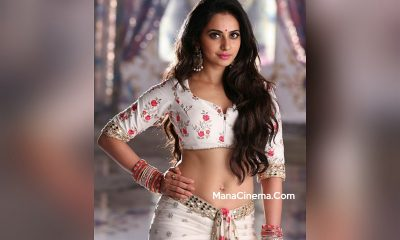 Rakul Preet Next Movie