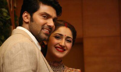 arya sayesha marriage reception photos images hd 21bc1f0