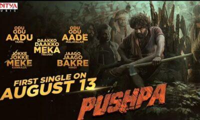 AlluArjun Pushpa First Single
