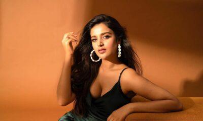 Nidhhi Agerwal to romance Nithiin